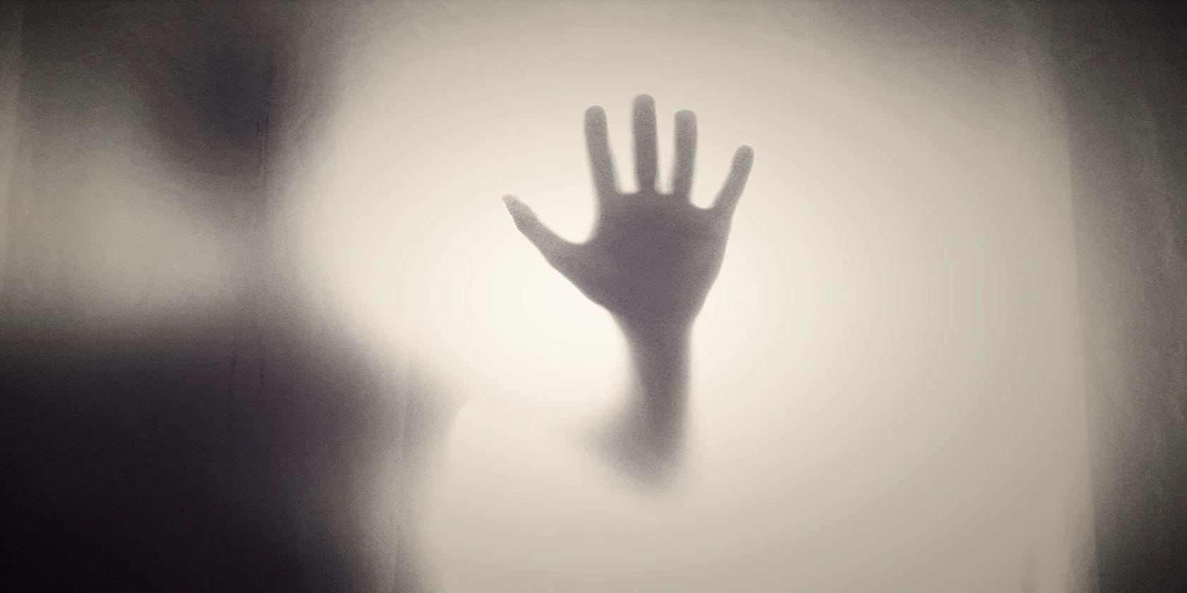 Shudder vs. Screambox: What's the Best Horror Streaming Service?