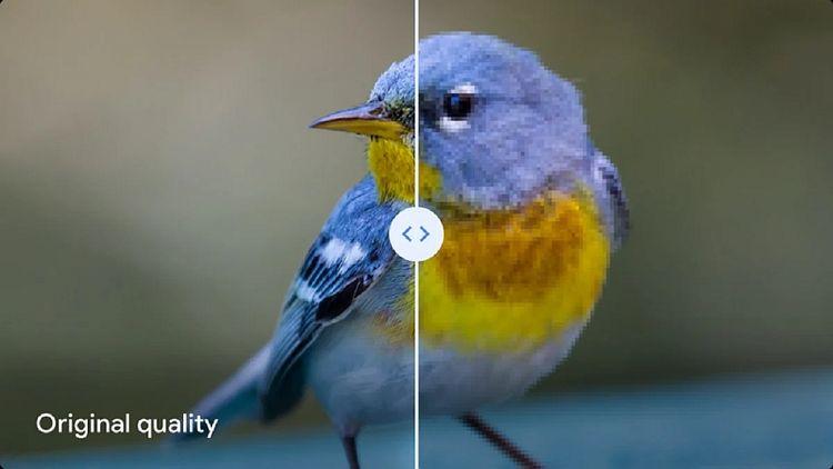 سرویس High Quality گوگل Photos